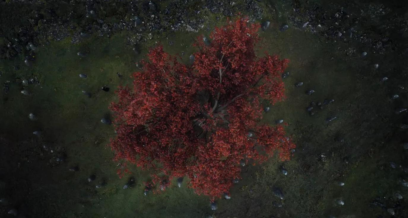 Gra o tron sezon 8 odcinek 1