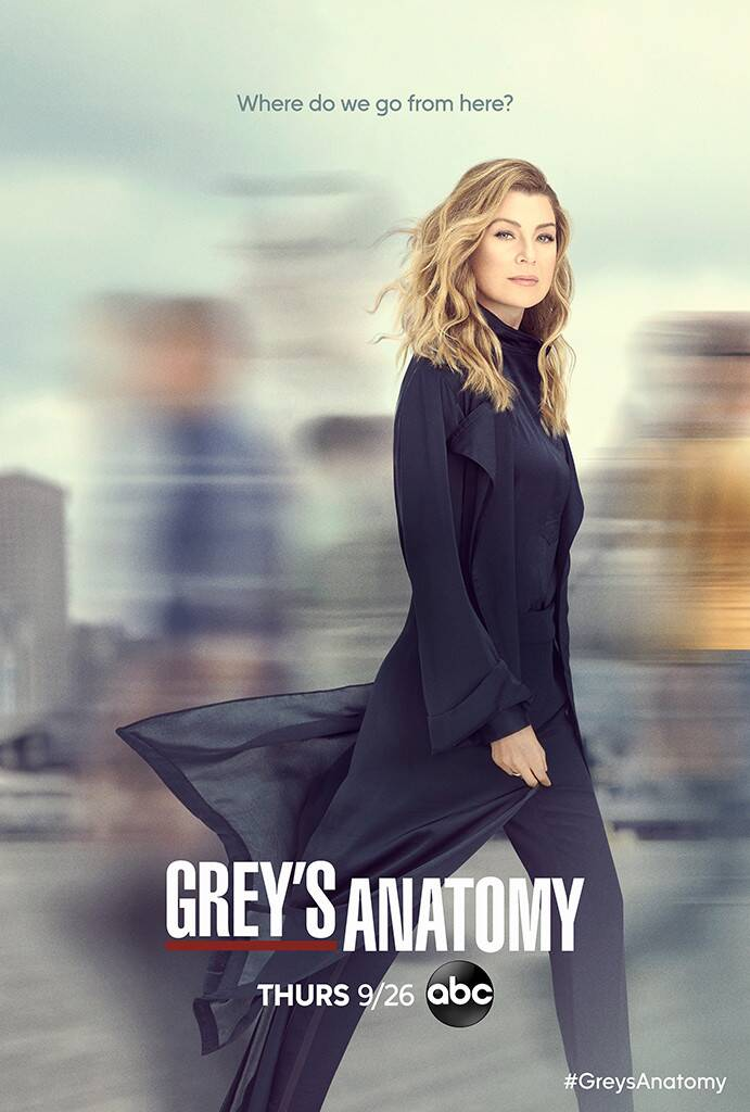 Chirurdzy sezon 16 plakat