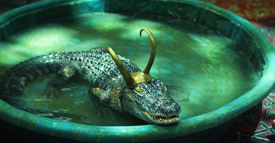 loki aligator wariant